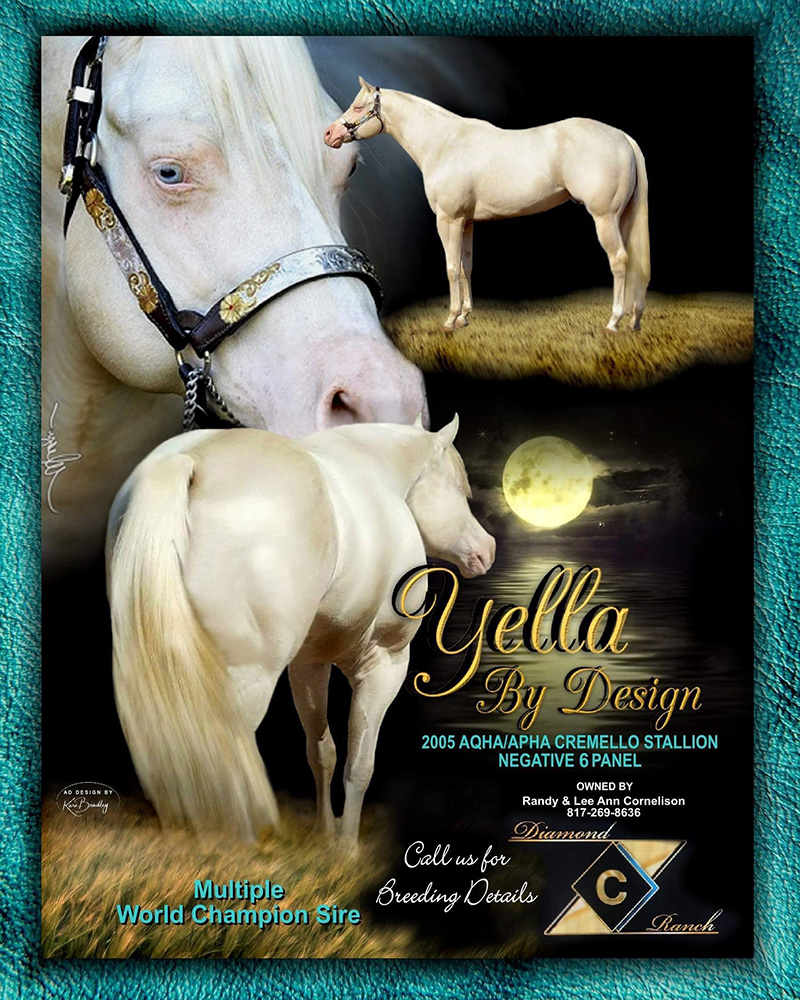 Yella By Design ad2021