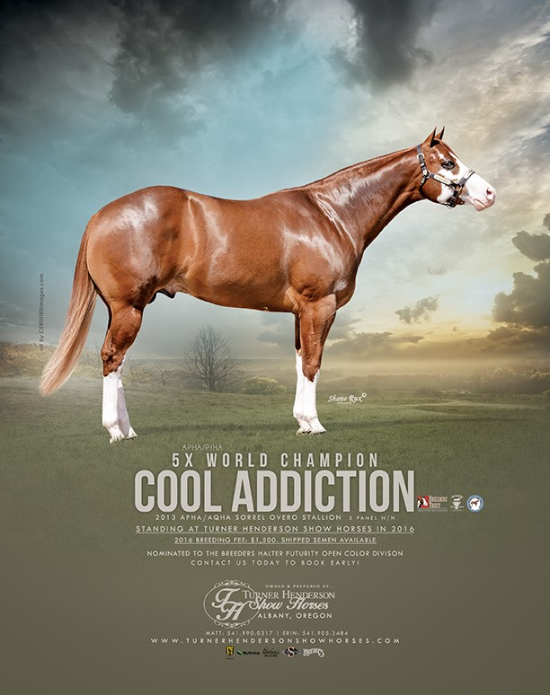cool addiction ad2016